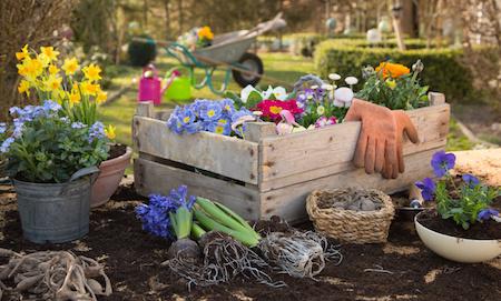 Gartenbedarf auf Raten kaufen